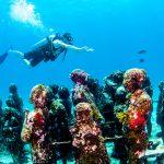 水中美術館体験ダイビング