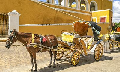 イサマル馬車観光